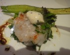 Saint-Jacques marinées à l'huile truffée © GP