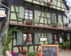 Au Bœuf - Plobsheim