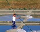 Le sel de Noirmoutier