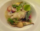 Navets aux huîtres ©GP