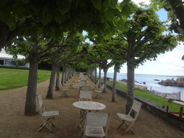 Allée d'arbres face à la plage © GP