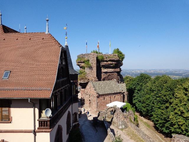 Au château du Haut-Barr © GP