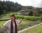 Badia a Coltibuono - Gaiole in Chianti