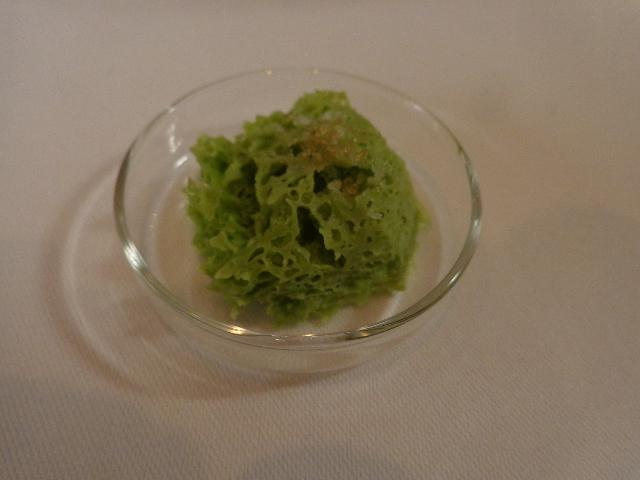 Eponge d'algue © GP
