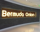 Bermuda Onion - Paris