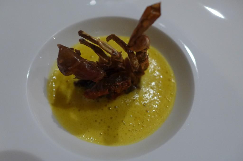 Crabe mou © GP