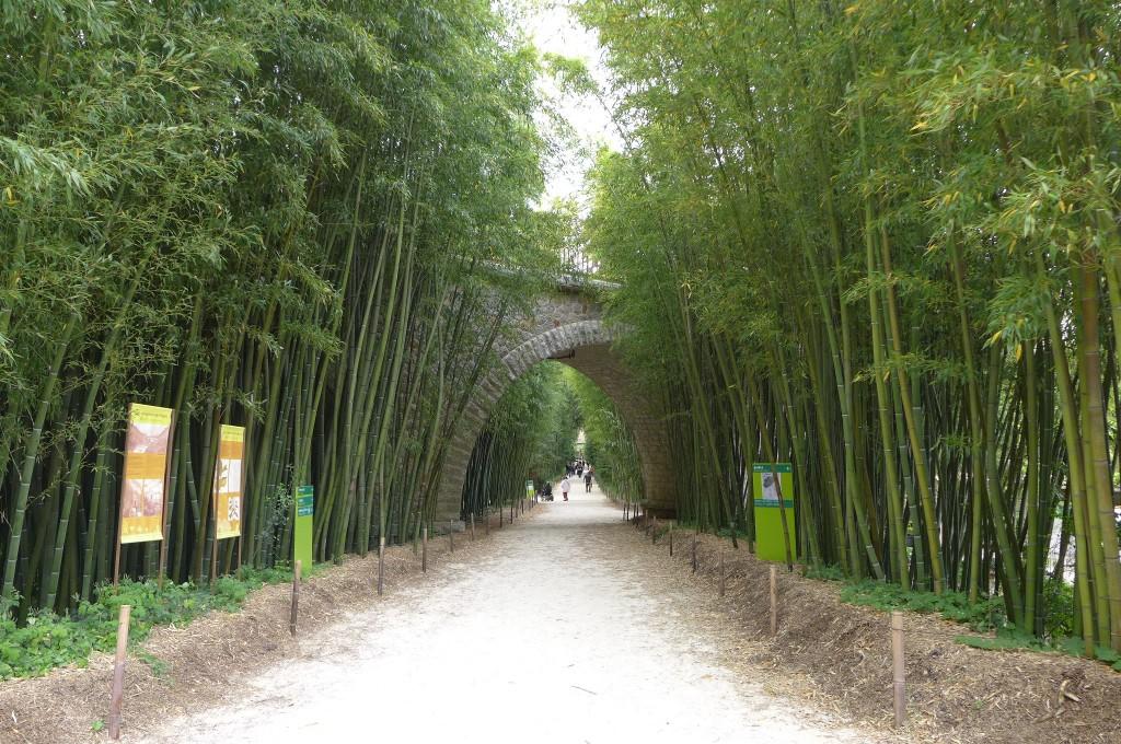 La bambouseraie jardin g n rargues magique bambouseraie voyages - La bambouseraie a anduze ...