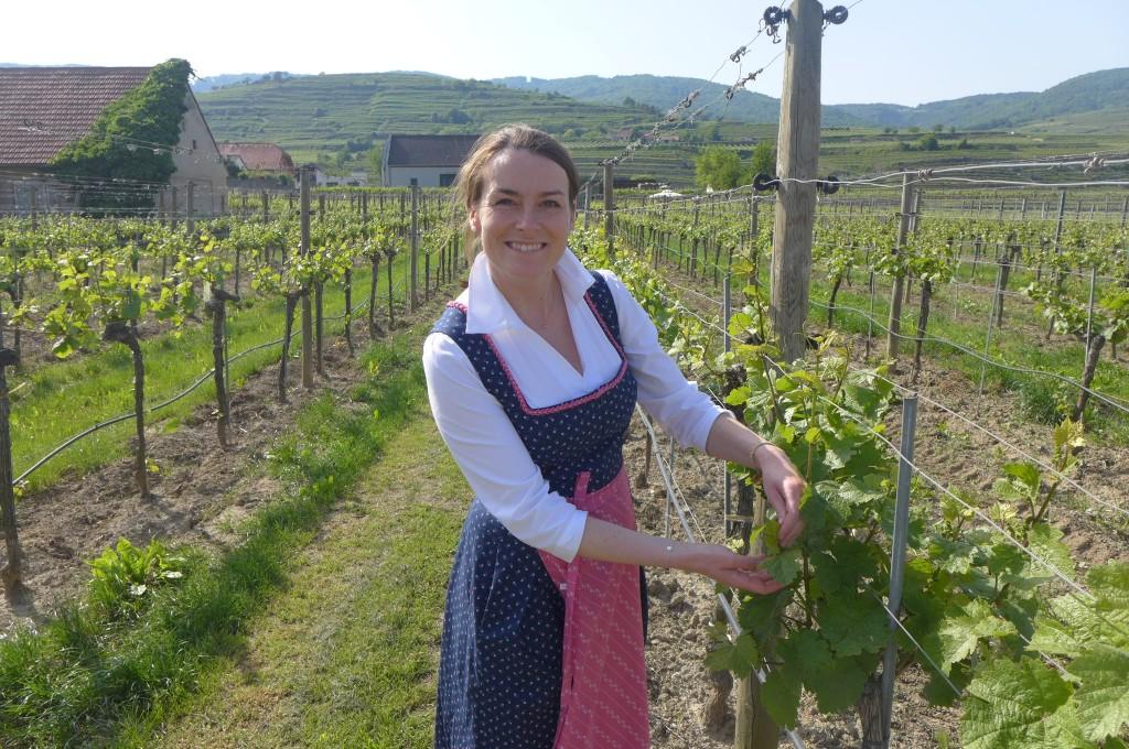 Barbara dans les vignes  ©GP