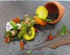 Légumes crus et cuits ©GP