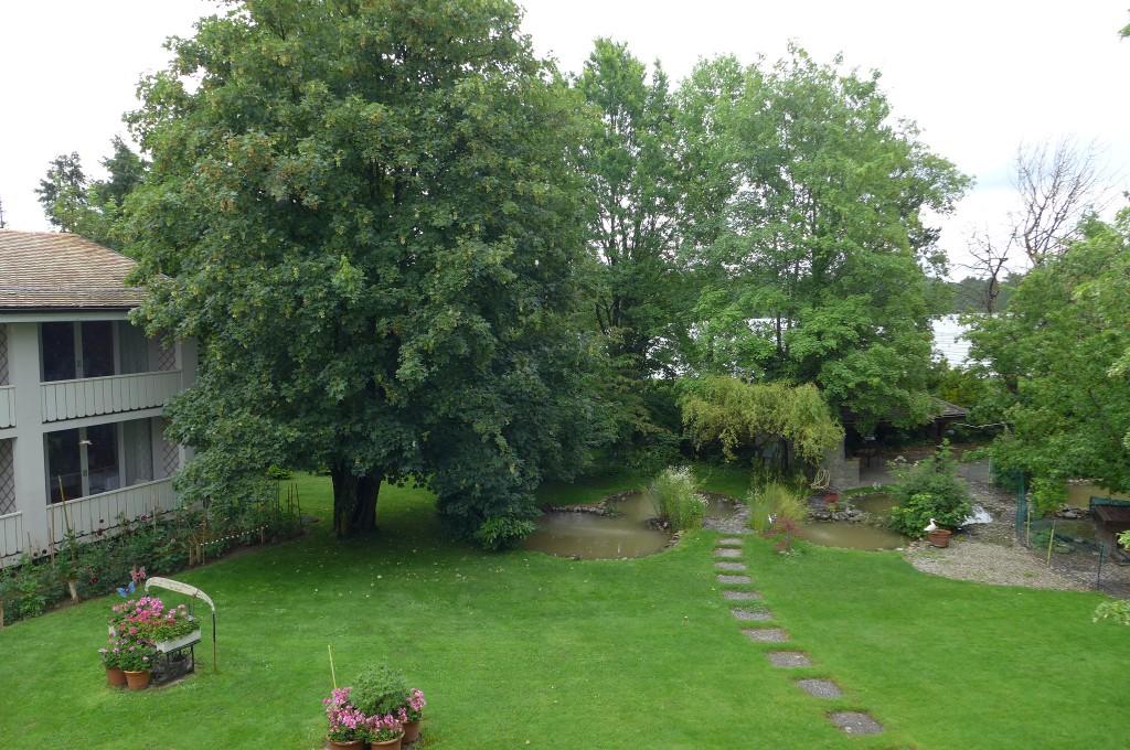 Le jardin ©GP