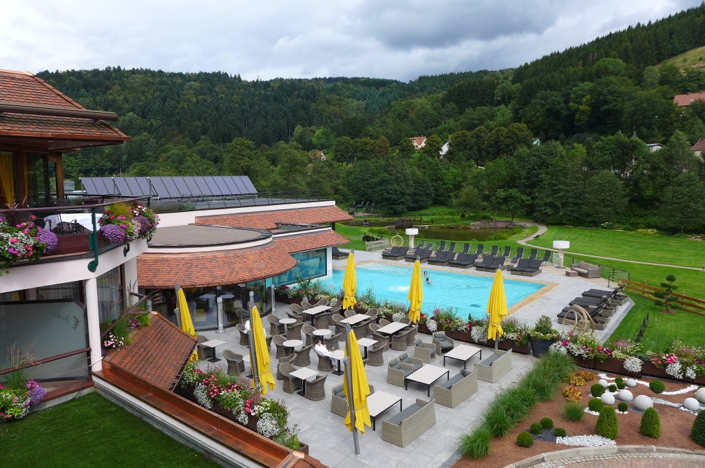Hotel Restaurant Julien Et Spa Fouday