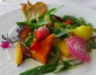 Légumes du potager © GP