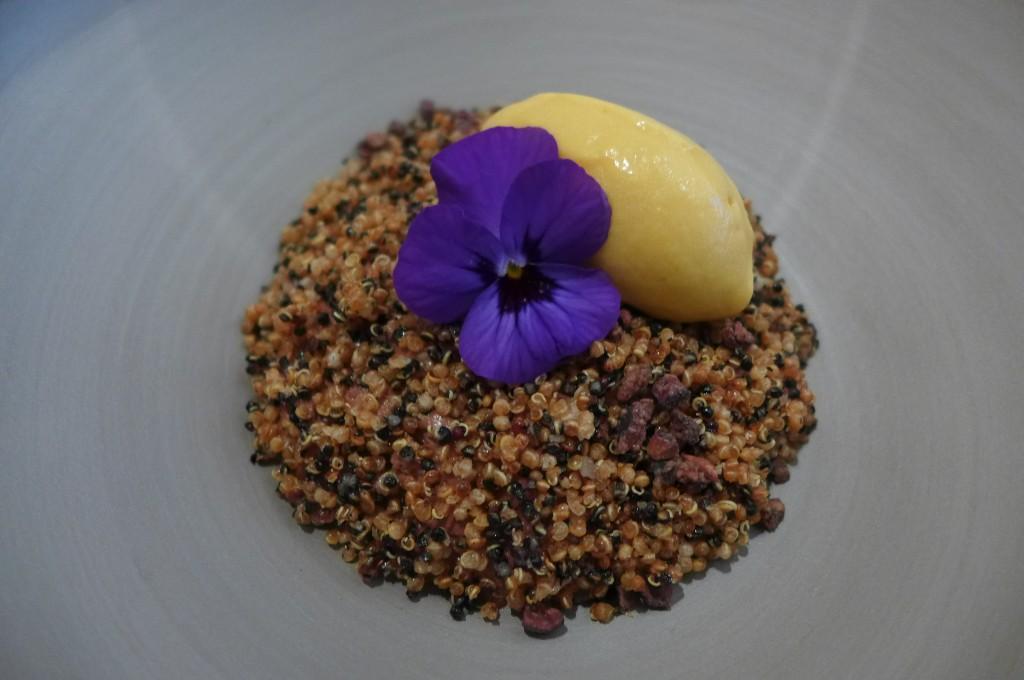 Mousse chocolat et quinoa © GP