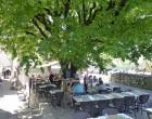 Le Tilleul - Saint-Paul-de-Vence