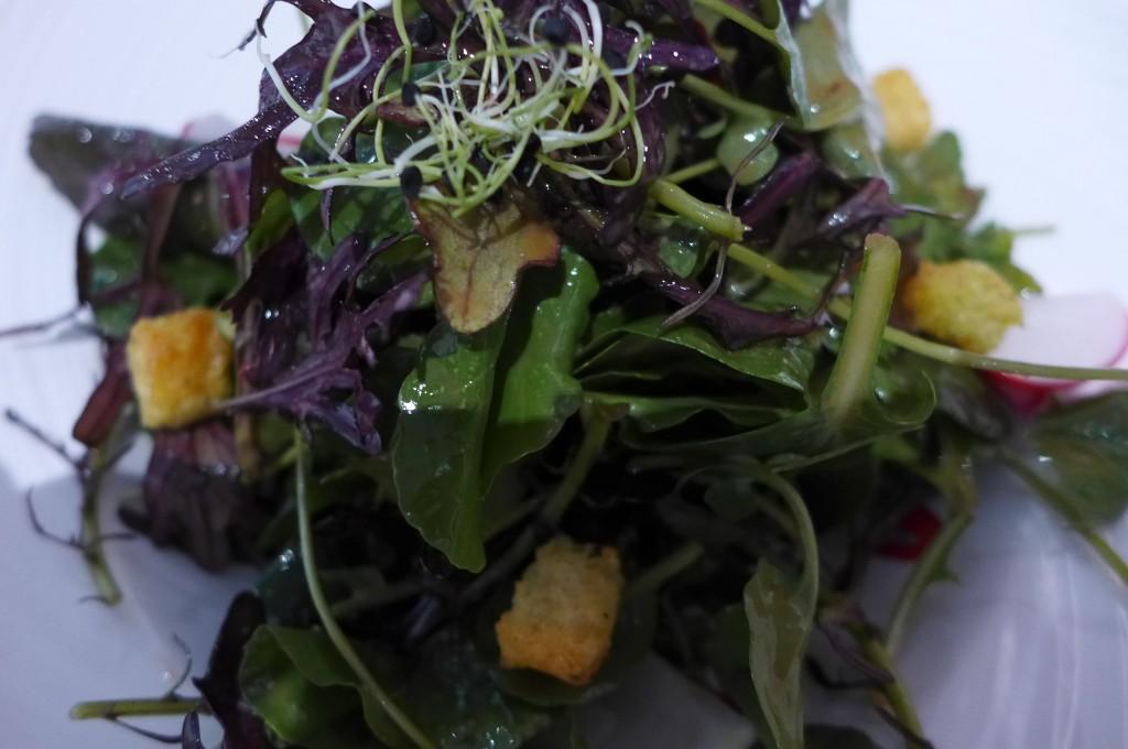 Mesclun de salades © GP