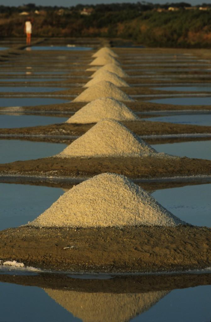 Europe/France/Pays-de-la-Loire/Vendée/Ile de Noirmoutier: Tas de sel sur un marais salant