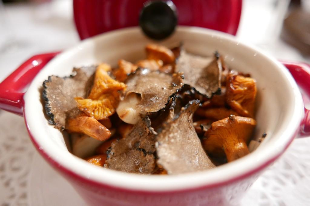 Cassolette de champignons © GP