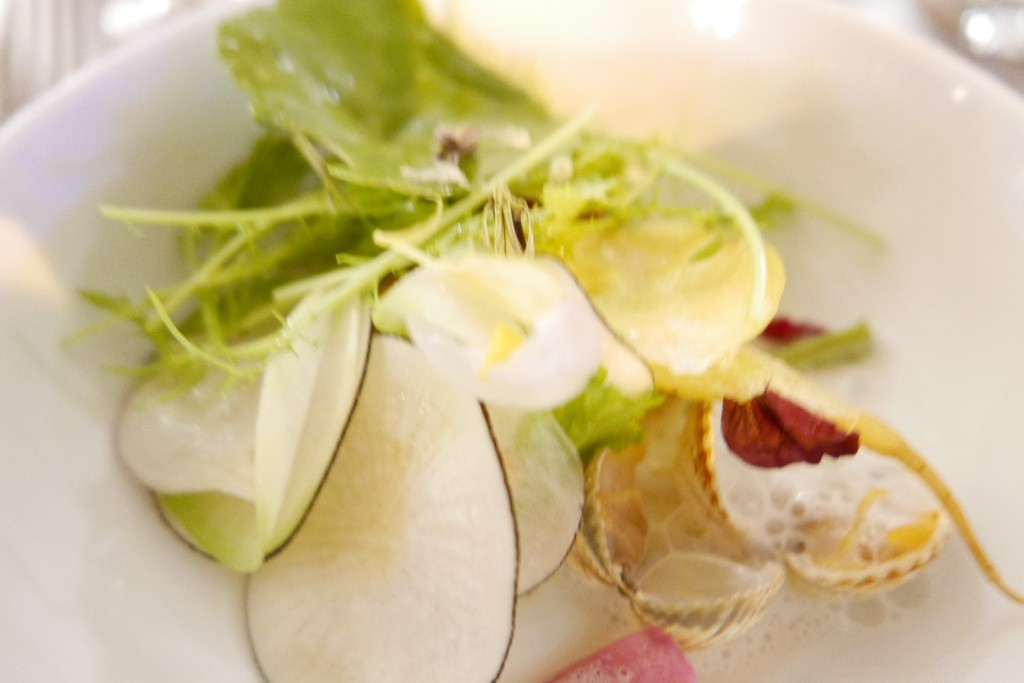 Légumes et coquillages © GP