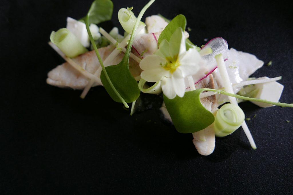 Bar ikejime panna cotta au lait ribot concombre et pomme verte © GP