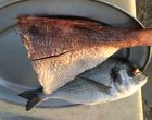 La pêche du jour © GP