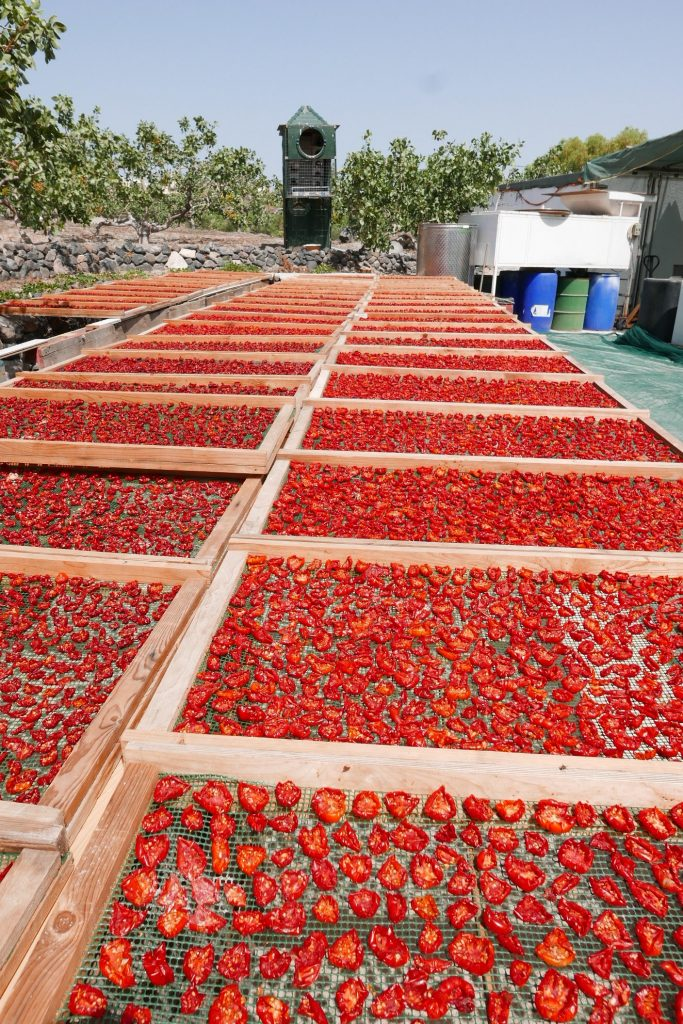 Tomates séchées © GP