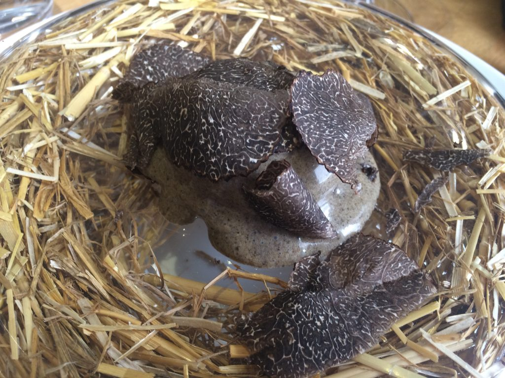 "Oeuf ""pourri"" de truffe © GP"