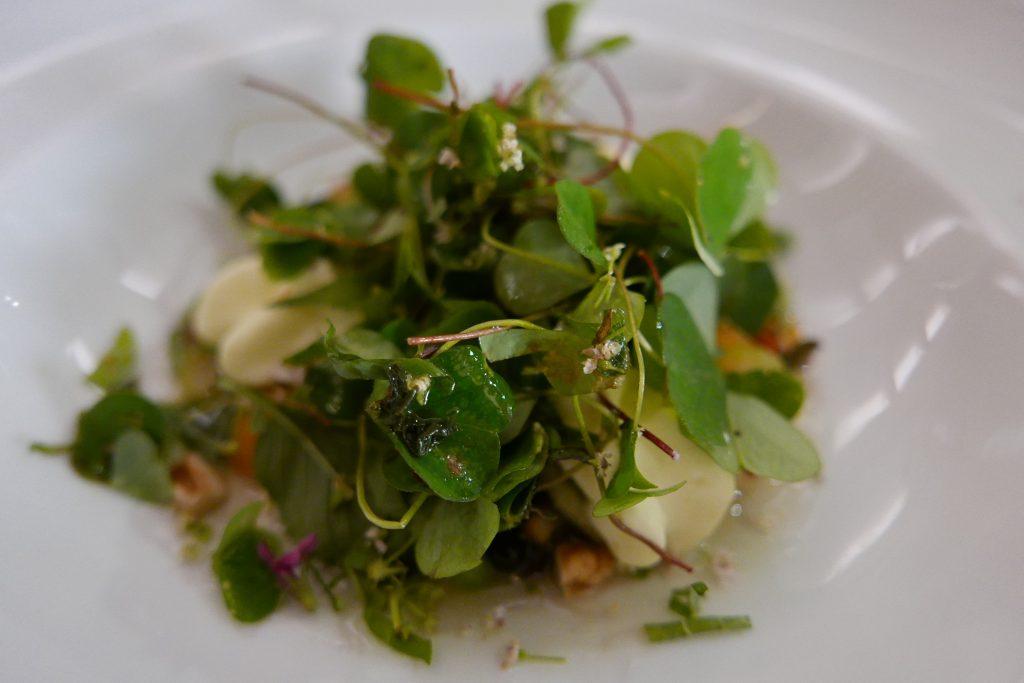 Salade du randonneur © GP