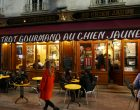Le Chien Jaune - Tours