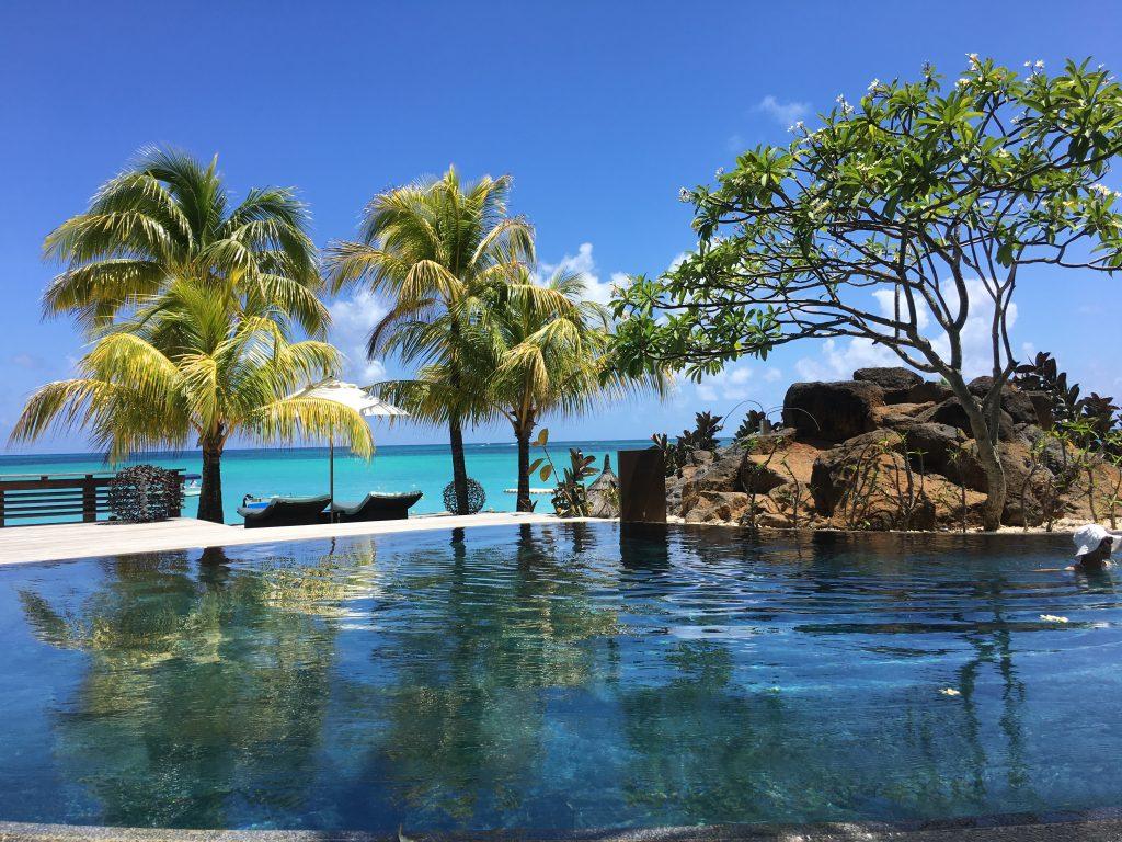 Ile Maurice : la légende du Royal Palm