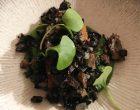 Poêlée de champignons © GP