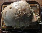 La fameuse poitrine de veau farcie © GP