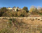Au pied du village de Mane © GP