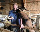 Thierry Ternaux, sa chèvre et son banon © GP