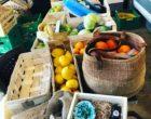 Légumes et fruits © GP