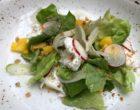 Salade de laitue, fenouil, burrata © GP