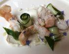 Langoustines, yaourt, concombre et menthe ©GP