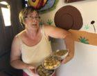 Hirschland : les escargots de Marie-Thérèse