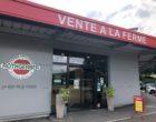 Traenheim: courses alsaciennes chez Rothgerber