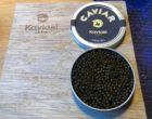Caviar Krystal © GP