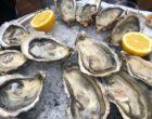 Choix d'huîtres © GP
