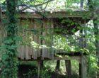 Les Cabanes des Benauges - Arbis