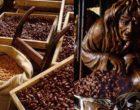 Montargis : les praslines vues par Maurice Rougemont