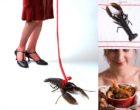La jeune femme au homard selon Emmanuel Giraud et Maurice Rougemont