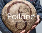 Apollonia Poilâne : pour l'amour du pain