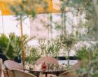 Dubaï : le Portugal gourmand vu par Lana Lusa