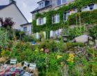 Saint-Cast-le-Guildo : un goût d'ailleurs aux Thés d'Emma