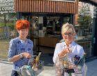 Rennes : l'épicerie des soeurs